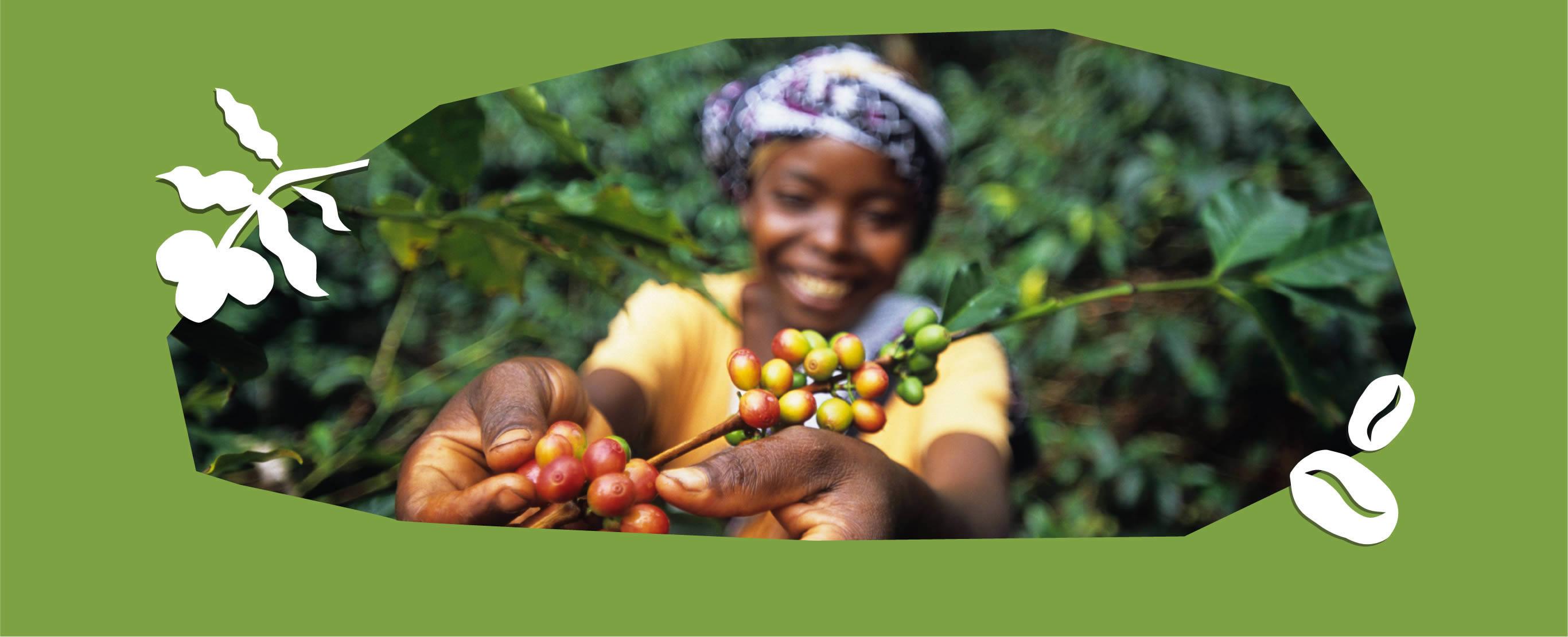Fairtrade and organic