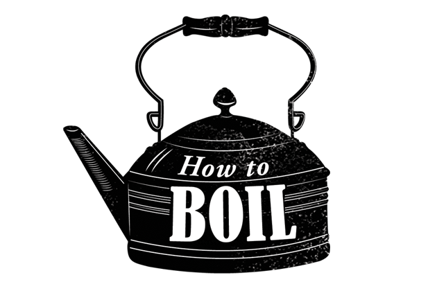 How-to-boil-Lrg
